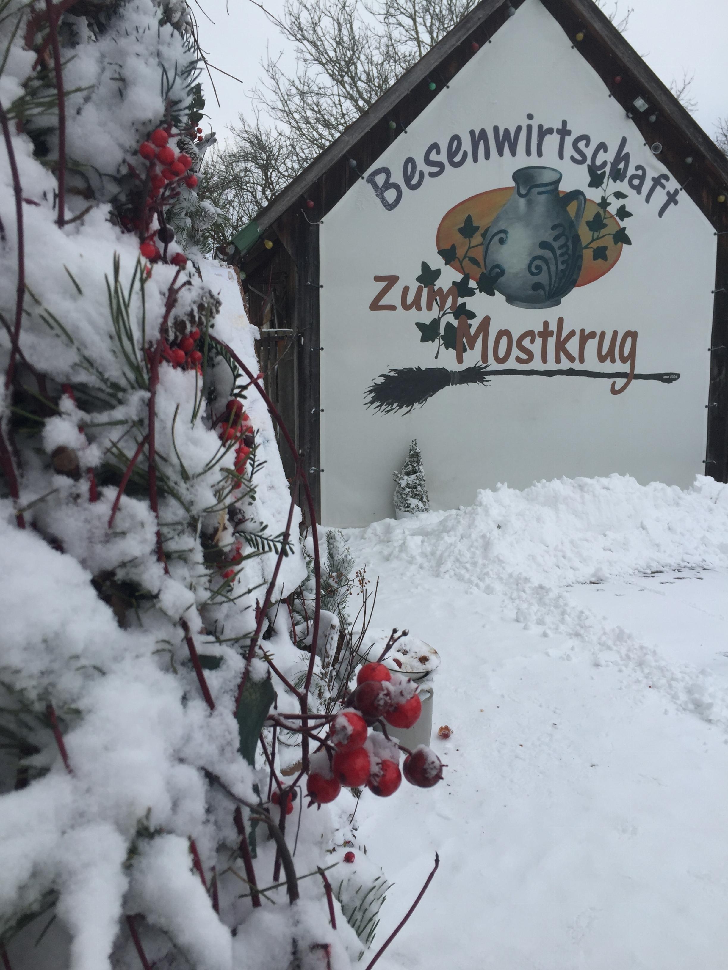 Winterbilder-Mostkrug-aussen-Januar-2017_2